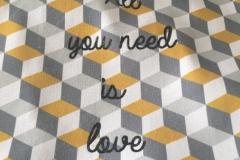 CO_AllyouNeedisLove