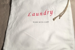 SC_Laundry01
